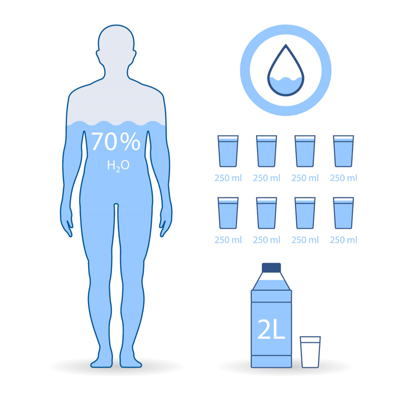 Consommation quotidienne d'eau pour un corps humain.