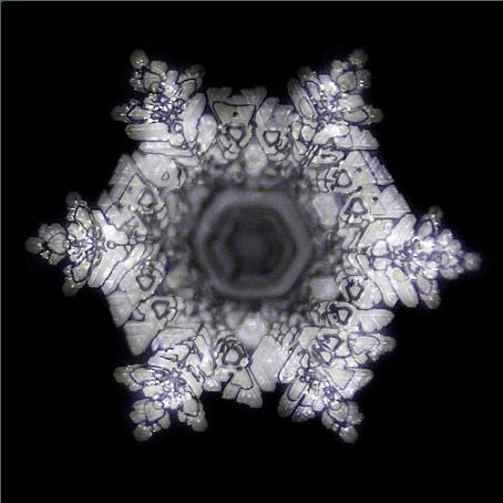 cristallisation de l'eau - Mazaru Emoto