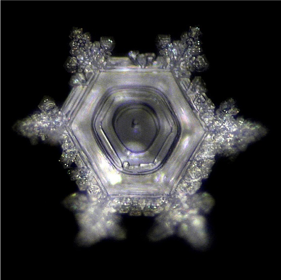 crystallization Mazaru Emoto